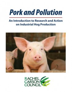 pork_pollution_cover