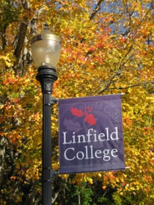 linfield college pole banner