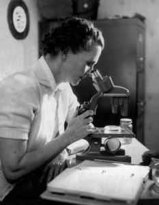 rachel carson at microscope