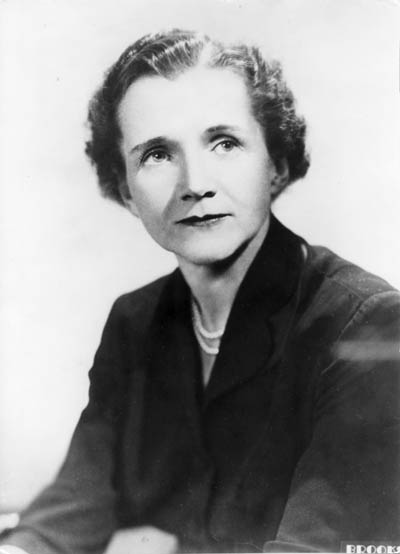 a biography of rachel lousie carson born on a farm in springdale Stuck writing about a johns hopkins university essays find thousands of free johns hopkins university essays, term papers, research papers, book reports, essay topics.