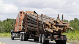 Image of logging truck
