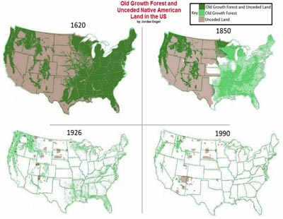 old growth forest maps