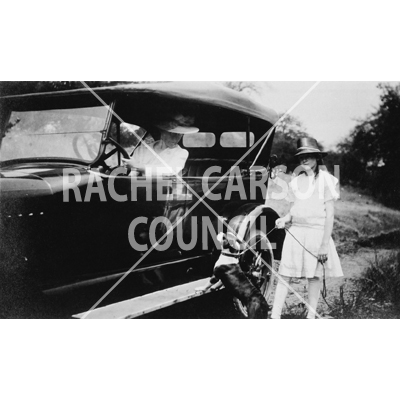 47_rc_by_car_pat_web_2016wm