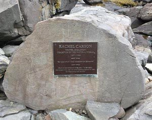 weathered bronze Rachel Carson plaque