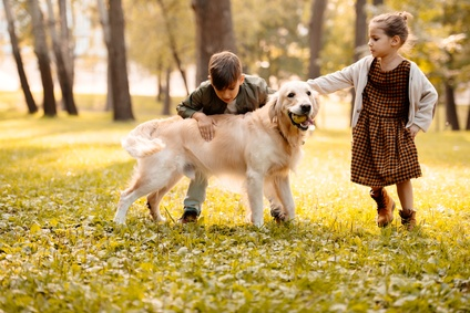 children playing with dog in the park