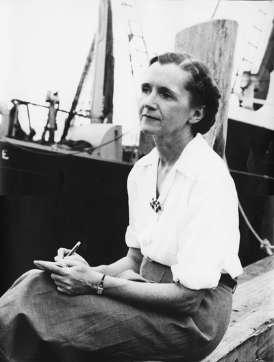 Image of Rachel Carson taking notes at Woods Hole, MA