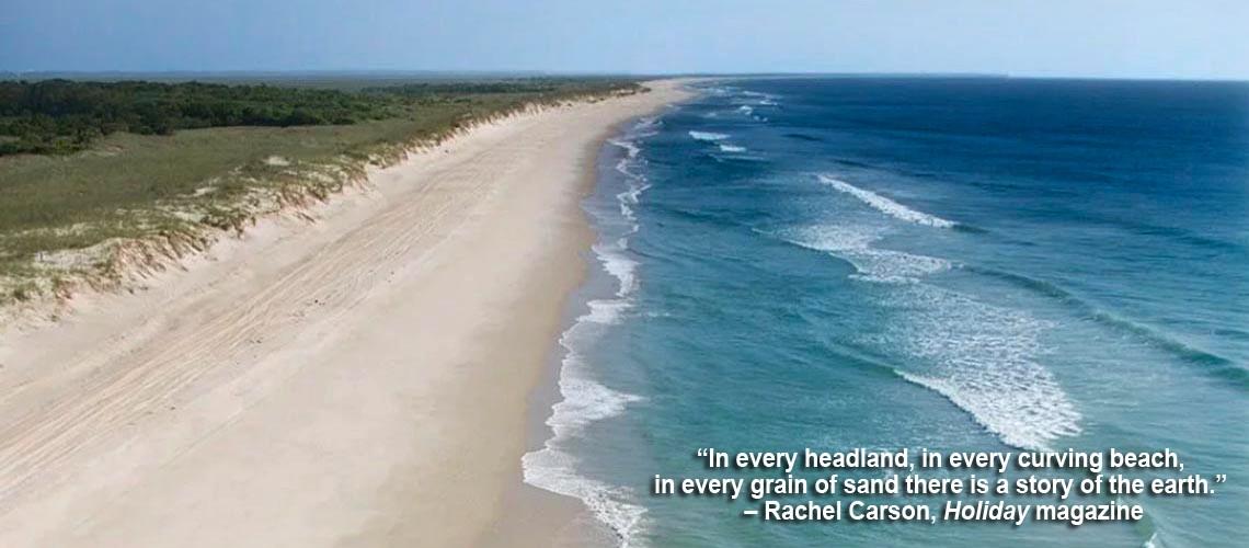 nc beach caption 2