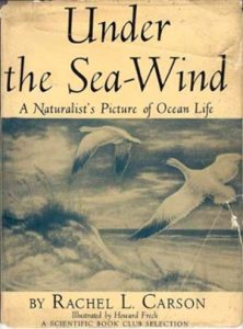 Image of Under the Sea-Wind book cover